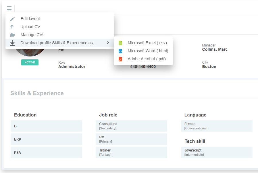 NetSuite OpenAir Enhancements